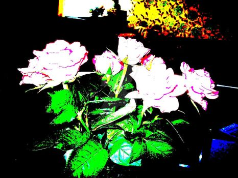 Roses Abstract by Lunasquire
