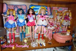 Sailor Moon Doll Shelf by SailorSamara