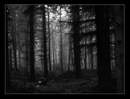 Place Of Loneliness IX by Issy2501