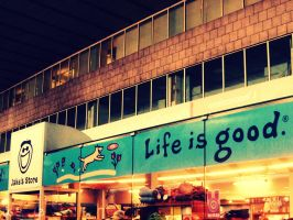 life is good by soannie
