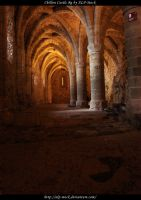 Chillon Castle - Dungeon 8 by ALP-Stock