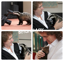 Brian May with the animals by natuwild