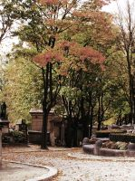 Le Pere Lachaise II by Meados