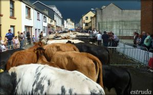 The Cattle Market 3 by Estruda
