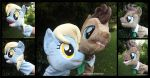 Derpy and Doctor Hooves Puppets by Peruserofpieces