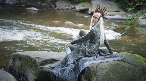 Thranduil King of the Woodland Realm (3) by NothingButTheBeat