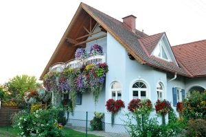 House of flowers - Grosswilfersdorf 1 by wildplaces