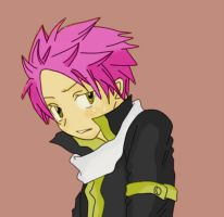natsu dragneel  - Fairy tail by danithax