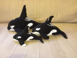 Orca Family Plushes by Okura