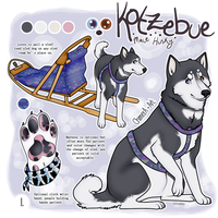 KOTZEBUE the Husky! by c-Chimera