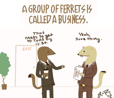 Business of Ferrets by Zane-The-Mudfish