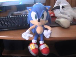 Sonic plushie :P by X2010