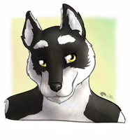 Icon for FurGrif by Shalinka