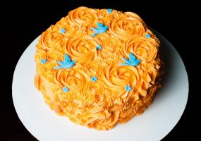 Orange Icing Swirl Cake with Blue Birds by KayleyMackay