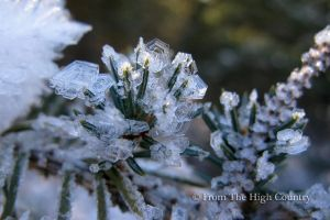 Crystallized by HighCountryImages