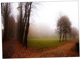 Misty morning by aniabeata