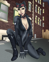 Catwoman by Sofie-Spangenberg