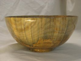 Monkey Puzzle Bowl 1 by kpalmer65