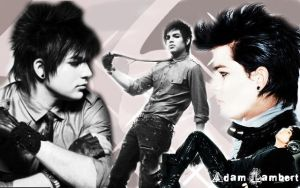 Adam lambert wallpaper 2 by bakabetty