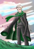 COLOUR_Draco Malfoy Sunset by SweetAmberkins