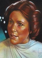 Princess Leia by JeffLafferty