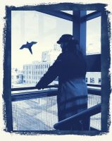 Quite the View 5 Cyanotype by Windthin