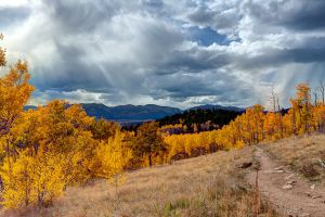 aspen trail, small image 2 by jbkalla
