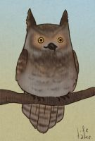 great horned owl by life-take