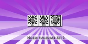 Ngees Sunburst brush Set by ngee