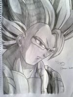 vegeto by chemi94