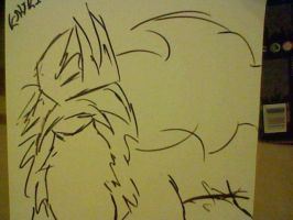 Entei :D by Redwolf076