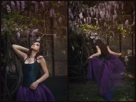Enchanted Wysteria by Cenestelle