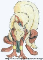 An Anthro Arcanine by sunfirefirewolf