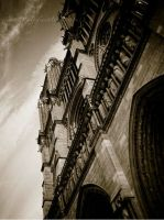 Cathedrale Notre Dame de Paris by janyk