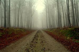 a road to..... by Lubanek
