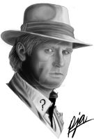 Peter Davison by andepoul