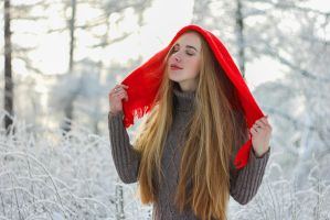 Winter Fairytale 2 by silverwing-sparrow