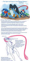 Greninja, Swampert and Toxicroak report and study by Weirda208