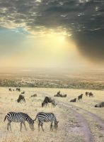 Once Upon a Time in Kenya - 6 by BenHeine