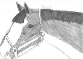 Sketch of Mobey by phee-evans