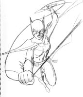 Batgirl swinging into action by bredenius