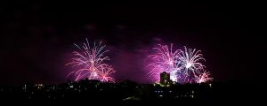 Midnight Fireworks - IMG_3688 by leafinsectman