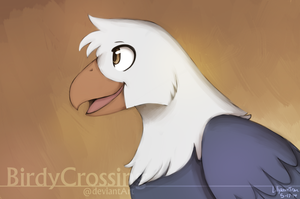 Animal Jam Eagle by BirdyCrossing