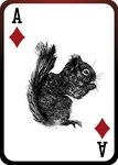 Squirrel Playing Card (Ace of Diamonds) by JackSephton