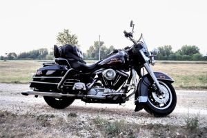 1990 Harley FLHS stock 10 by pynipple