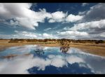 Puddle For David by P0RG
