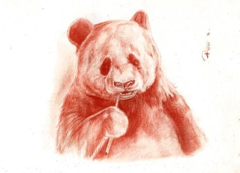 Panda by reniervivas666