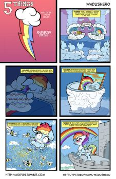 5 Facts About Rainbow Dash by Wadusher0