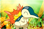 Cyndaquil by jagged66