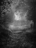 The Path by Arctosis